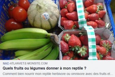 Dr devaux nutrition reptile
