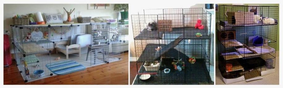 Exemples enclos dr nacophile drnacophile amenagement cage lapin recommandaiton veterinaire nac