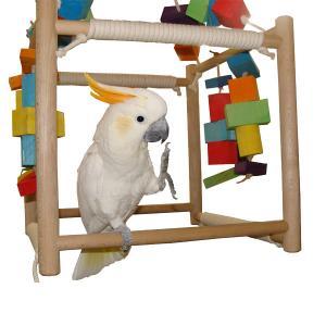 Jeu perroquet