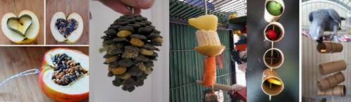 Jouets perroquets DIY homemade fait-maison