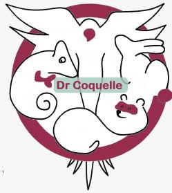 Logo dr coquelle fond gris