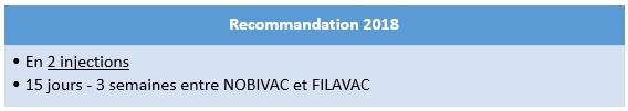 Nobivac filavac recommandations