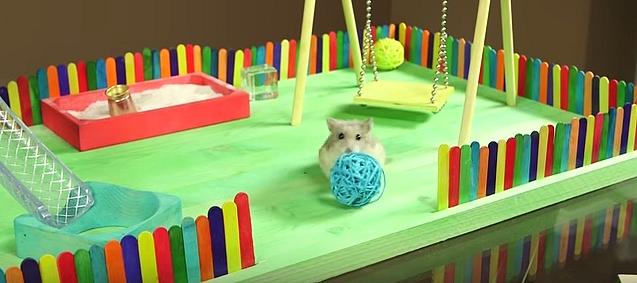 Parc de jeu hamster