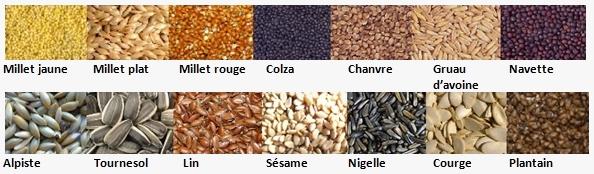 Reconnaitre graines