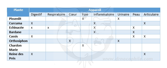 Tableau phytotherapie utilisation chez les nacs lapin furet perroquet perruche cochon dinde cobaye dr coquelle