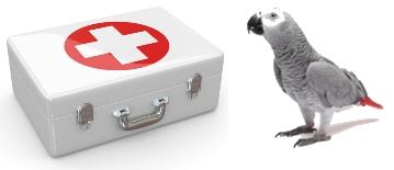 Urgence perroquet trousse
